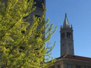 Đại học U.C. Berkeley (ảnh Bùi Văn Phú)